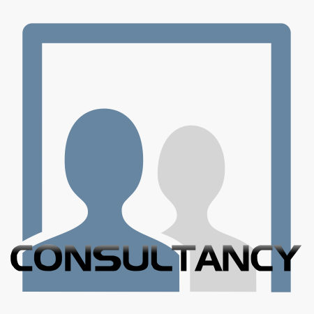 Consultancy product shop icon